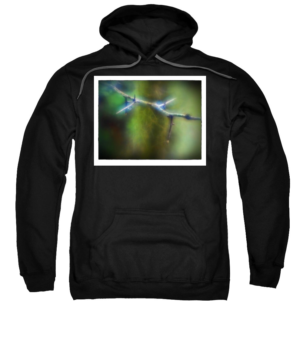 Swamp Sweatshirt featuring the photograph Deep In The Bayou by Judi Bagwell