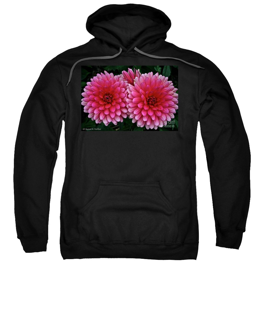 Floral Sweatshirt featuring the photograph Double Dahlia by Susan Herber