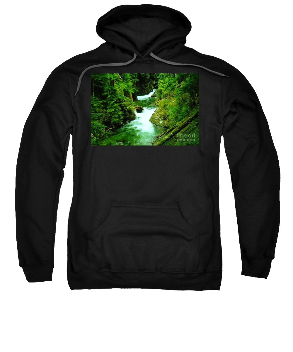 Water Sweatshirt featuring the photograph Double Falls by Jeff Swan