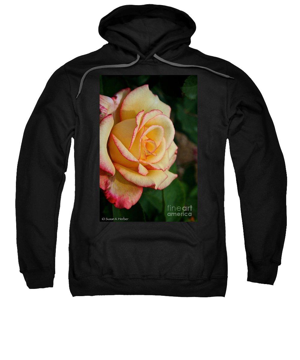 Plant Sweatshirt featuring the photograph Dream Come True Grandiflora by Susan Herber