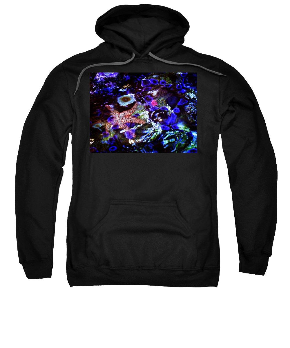 Aquarium Sweatshirt featuring the photograph Emerged Starfish by Xueling Zou