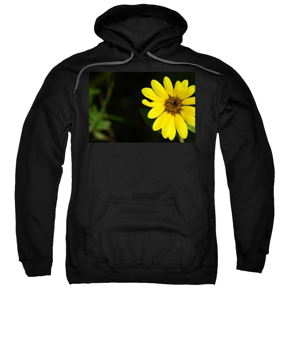Flower Sweatshirt featuring the photograph Facing The Light by David Weeks