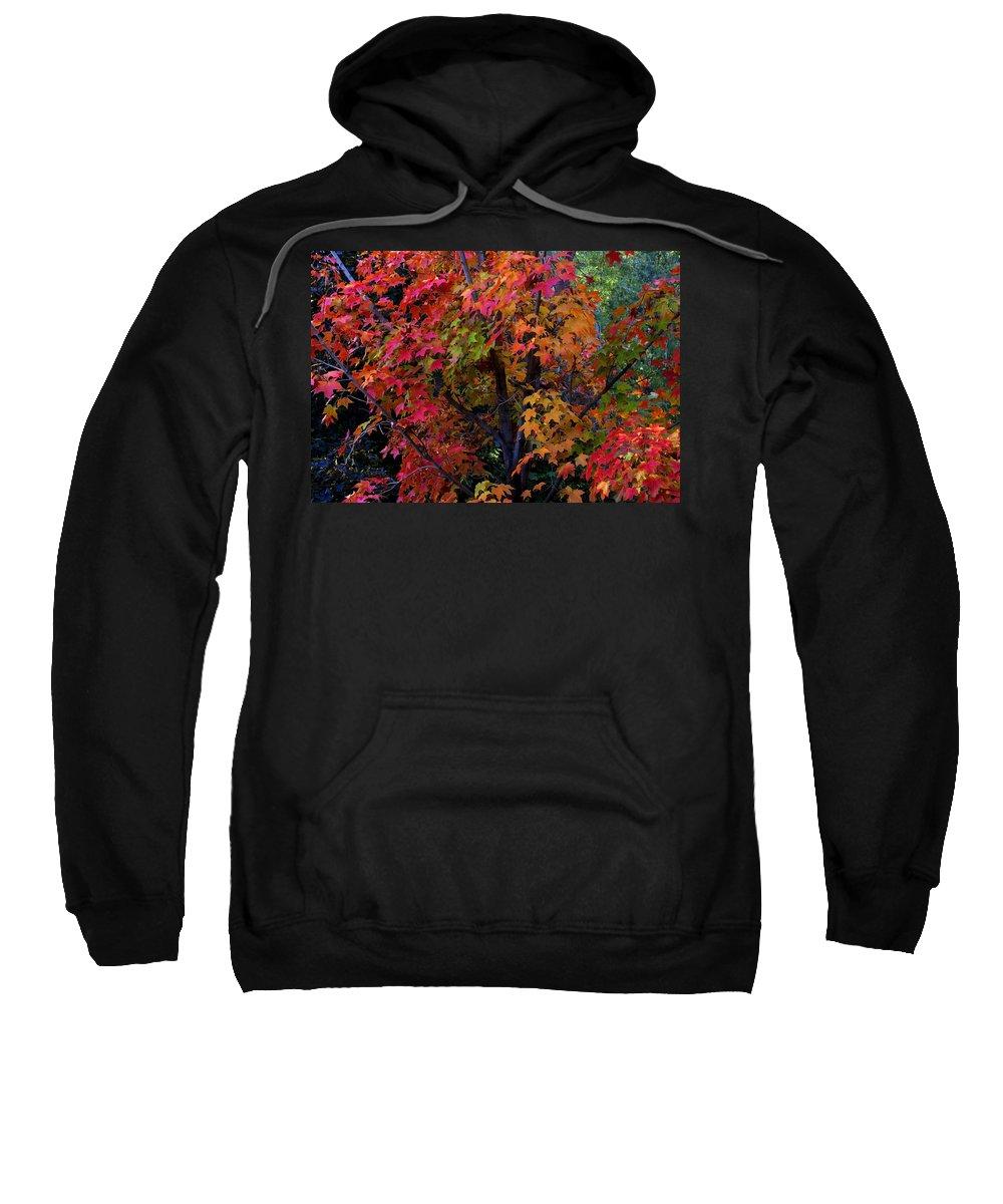 Autumn Sweatshirt featuring the photograph Falls Fiery Rainbow by Jim Robbins