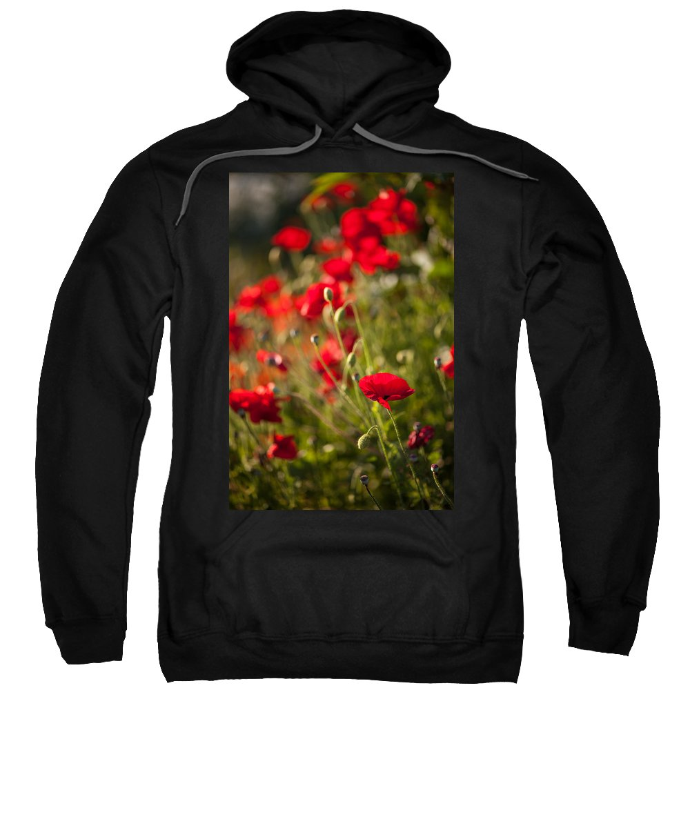Flower Sweatshirt featuring the photograph Fields Of Fire by Mike Reid