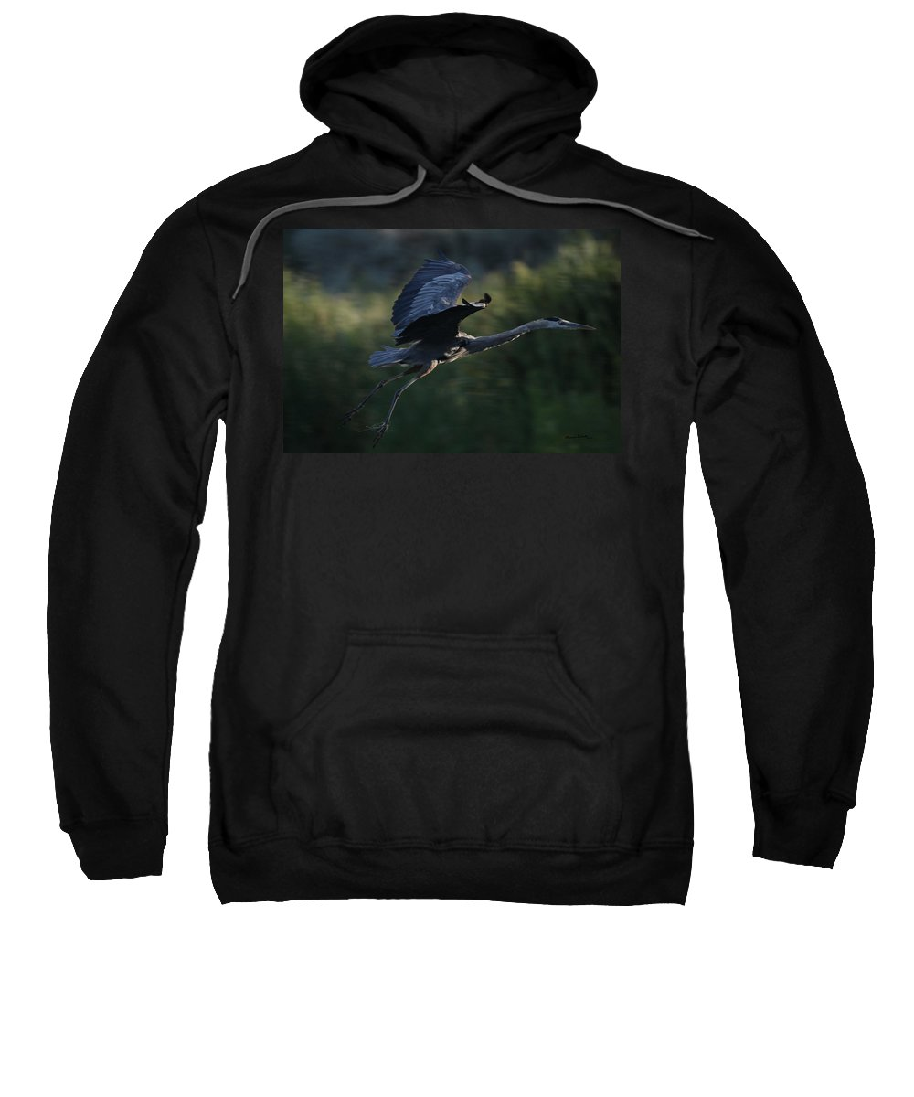 Animals Sweatshirt featuring the photograph Flight Of The Heron by Ernie Echols