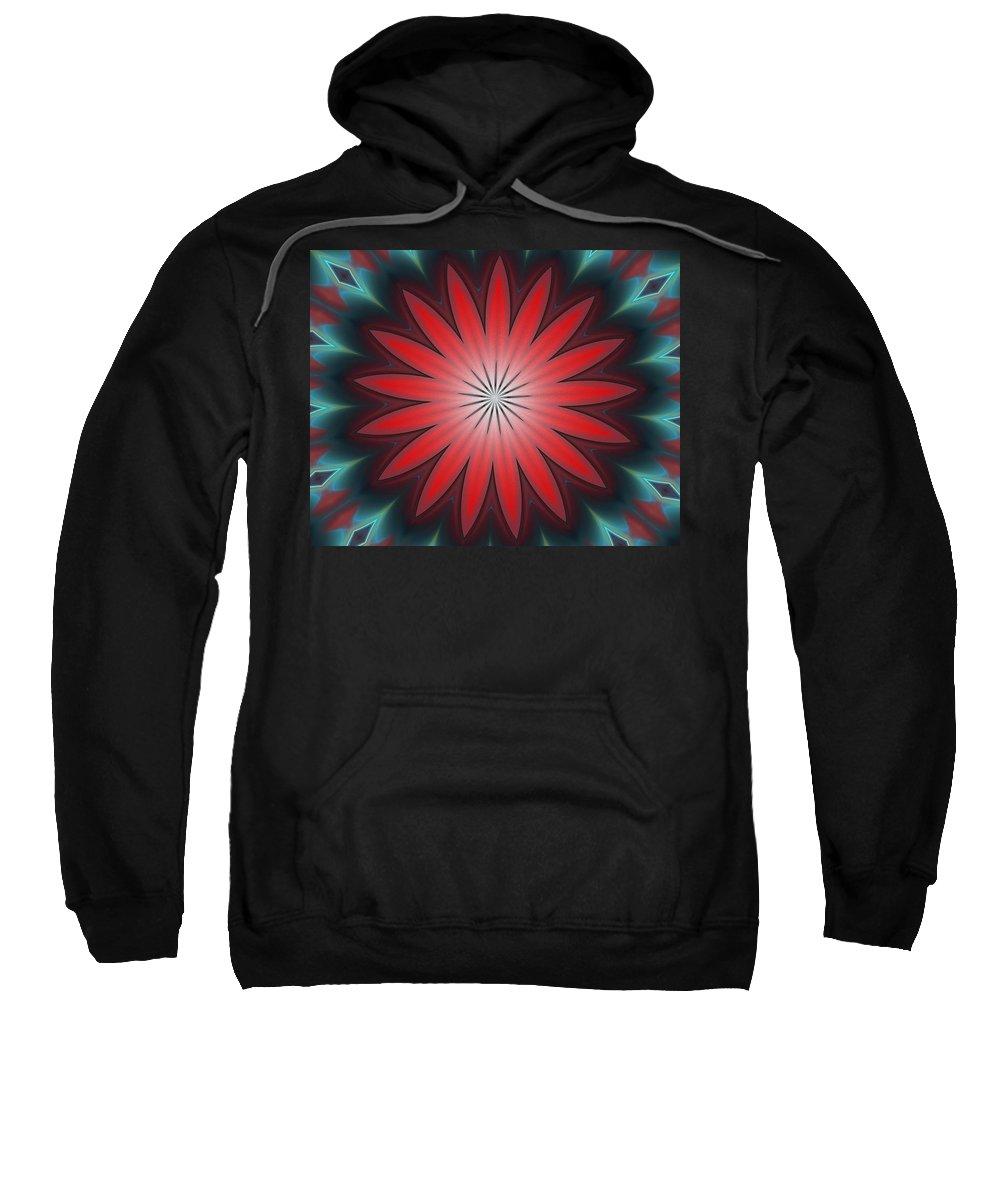 Fine Art Sweatshirt featuring the digital art Floral Geometric 102311a by David Lane