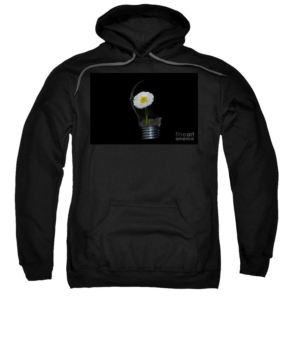 Flower Sweatshirt featuring the photograph Flower Growing Inside A Lamp by Mats Silvan