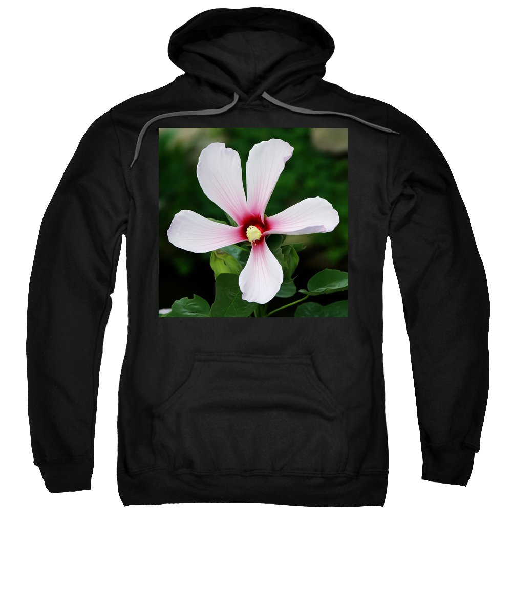 Metro Sweatshirt featuring the digital art Flower Painting 0007 by Metro DC Photography