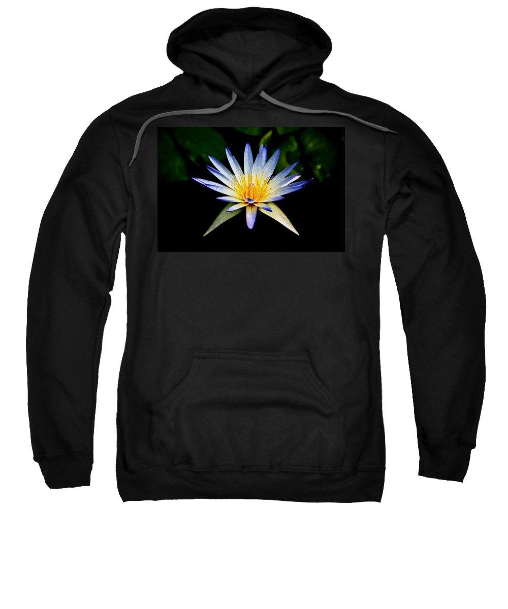 Flowers Sweatshirt featuring the photograph Flower Symmetry by Steve McKinzie