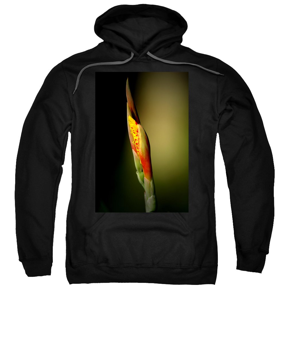 Flower Sweatshirt featuring the photograph Flowerbud by David Weeks