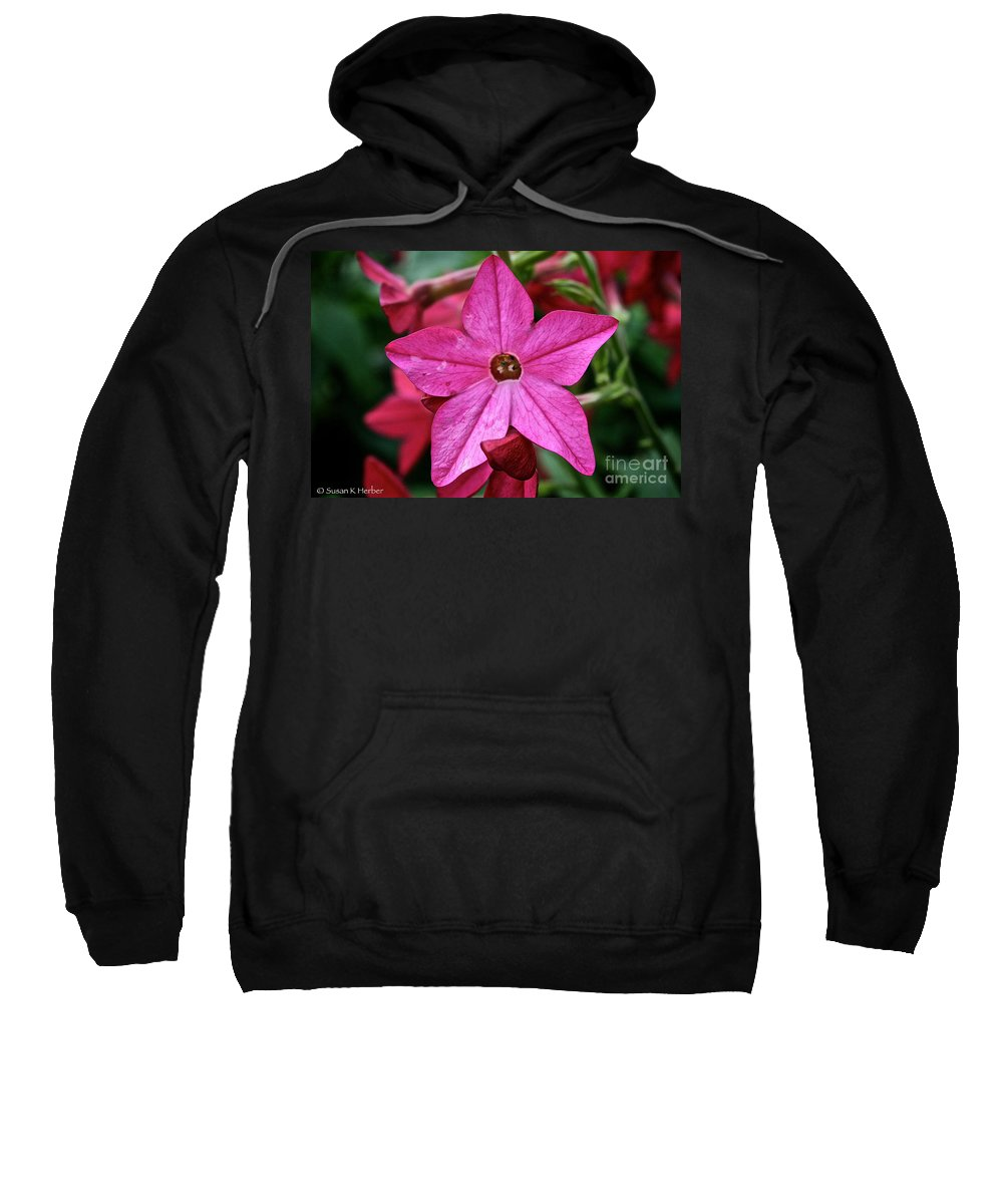 Floral Sweatshirt featuring the photograph Flowering Tobacco by Susan Herber