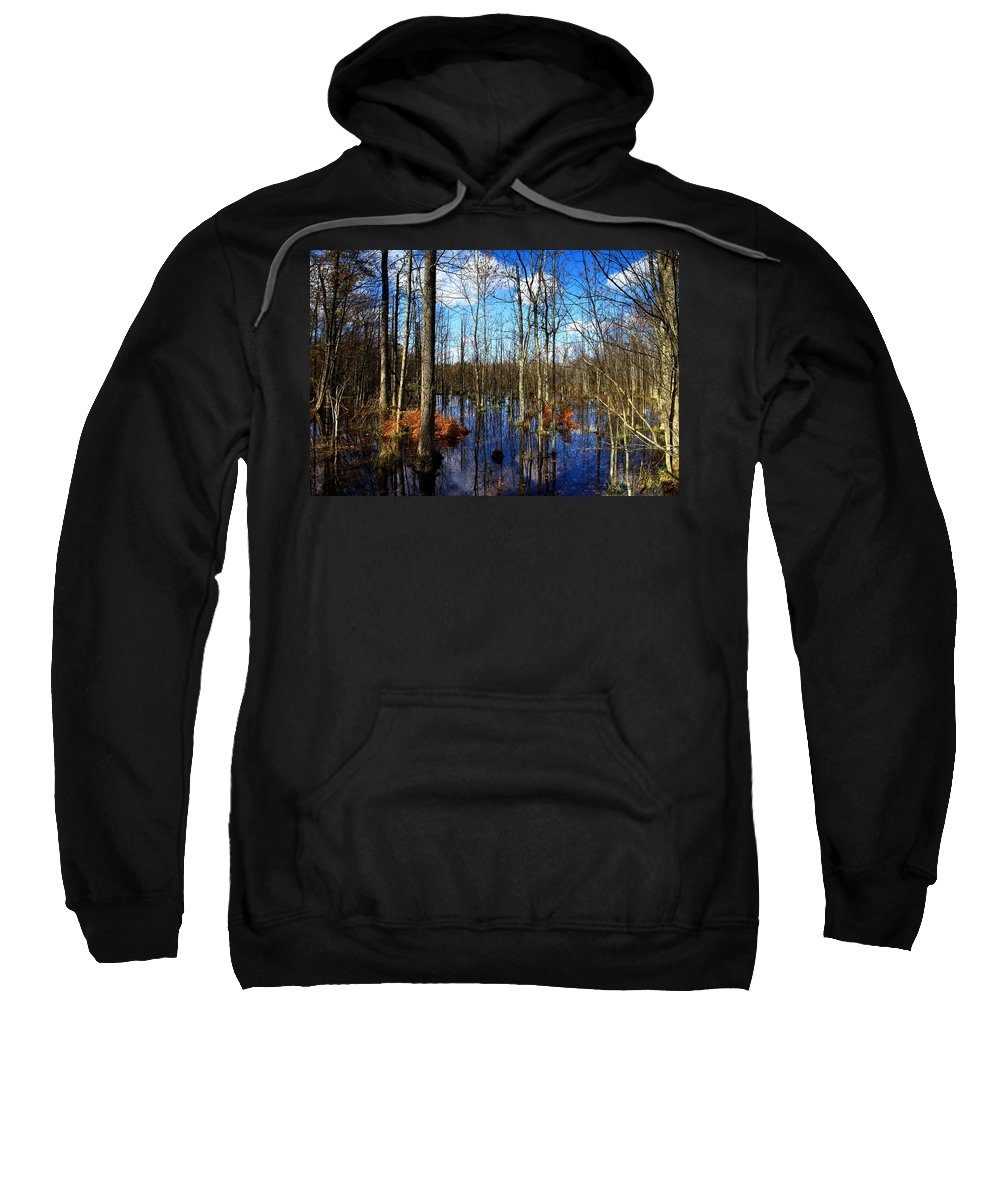 Forest Sweatshirt featuring the photograph Forest In Colorful Fall by Paul Ge