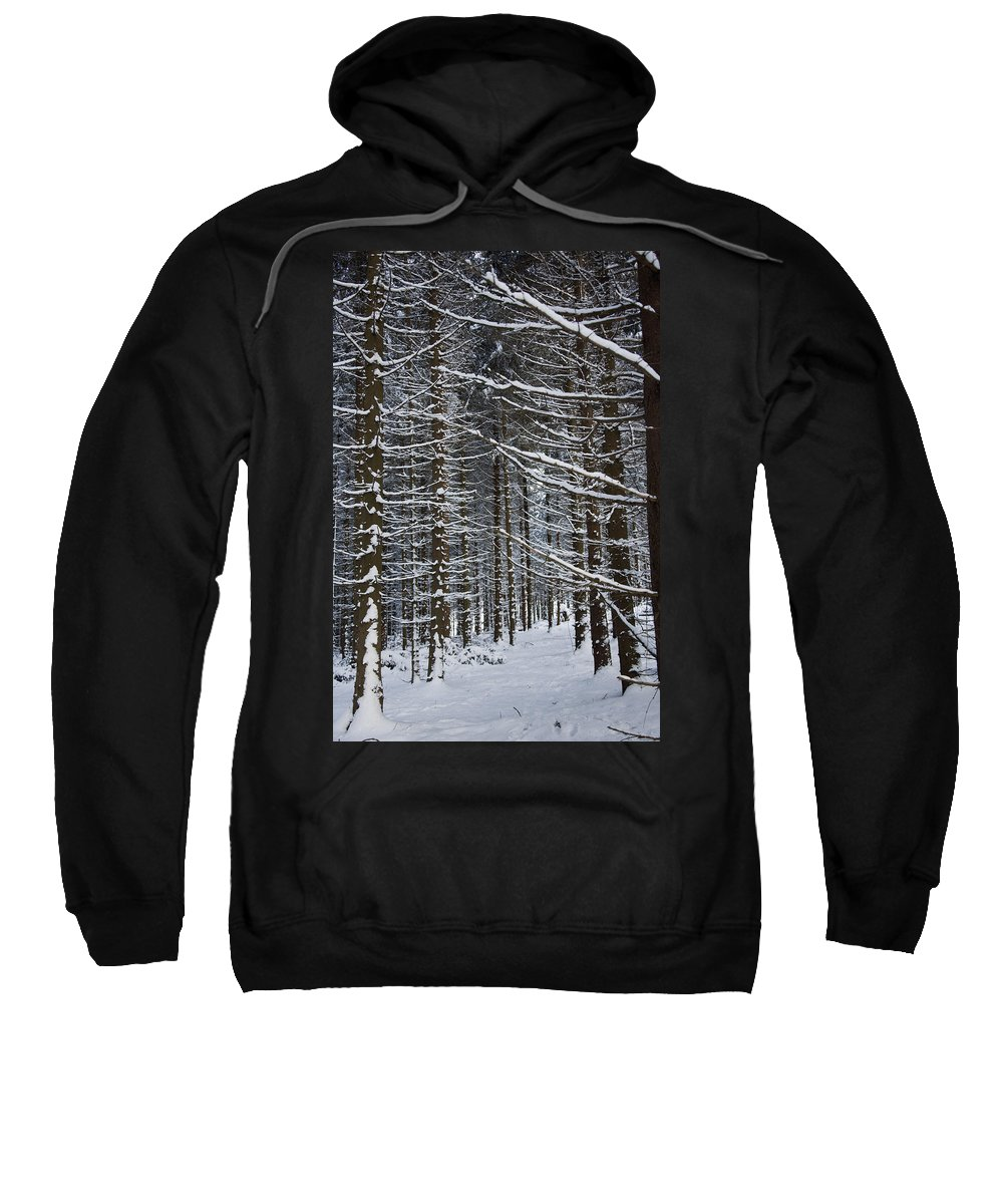 Marburg Sweatshirt featuring the photograph Forest Of Marburg In Winter by Axiom Photographic