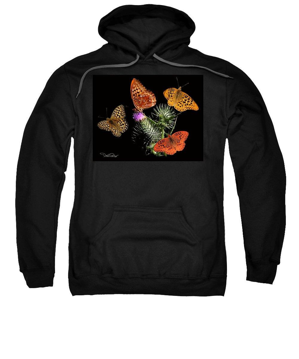 Nature Sweatshirt featuring the digital art Four Fritillaries by David Salter