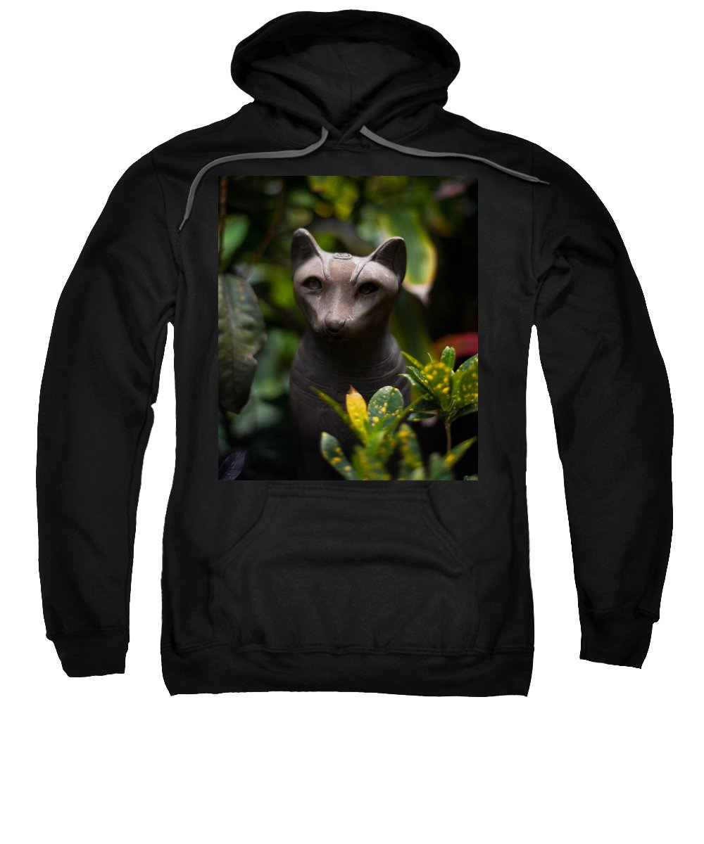 Island Sweatshirt featuring the photograph Garden Cat by Mike Reid