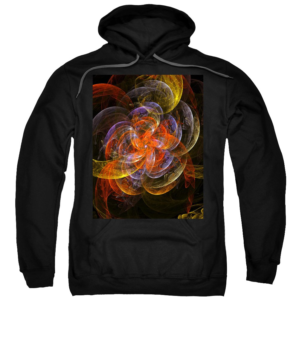 Garden Flower Flowers Abstract Expressionism Impressionism Decorative Translucent Sensitive Light Sweatshirt featuring the painting Garden Flowers by Steve K