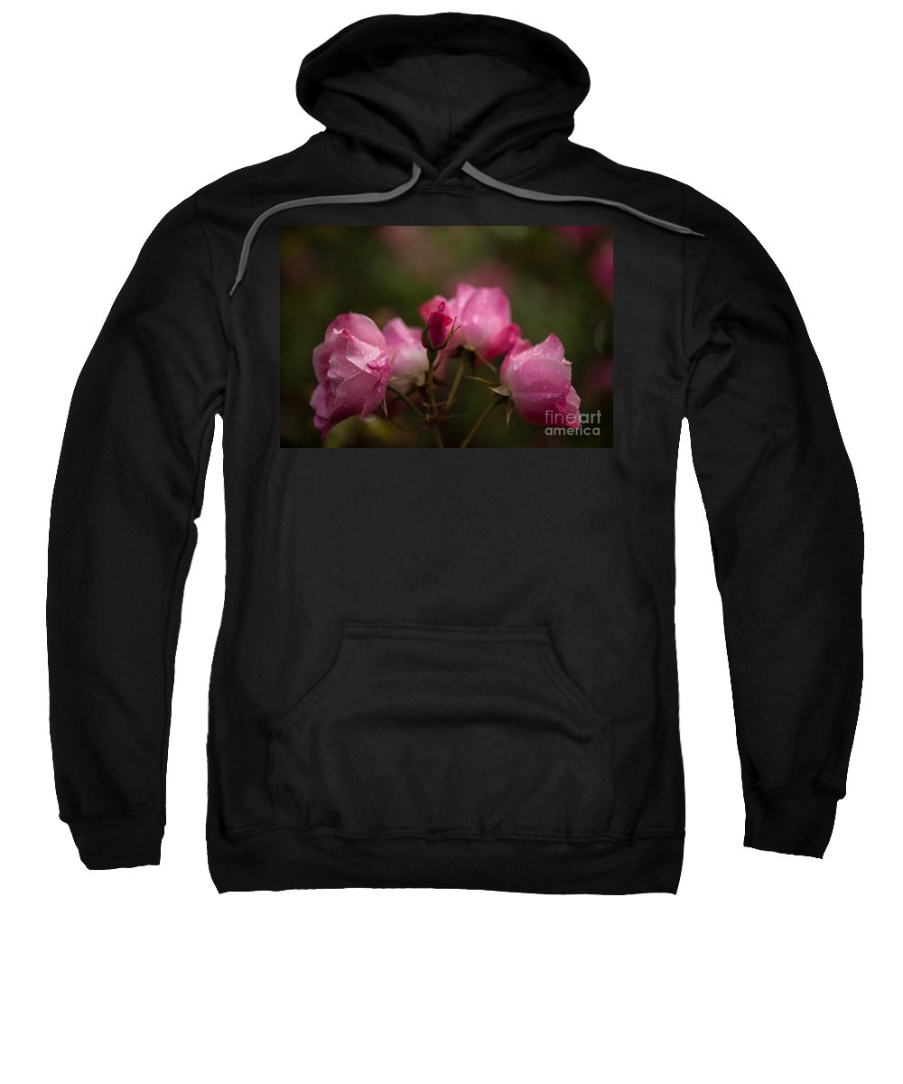 Flower Sweatshirt featuring the photograph Garden Of Grace by Mike Reid