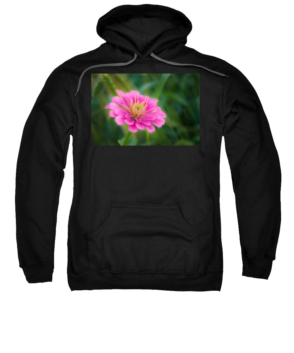 Wildflower Sweatshirt featuring the photograph Gentle Reminder by Bill Pevlor