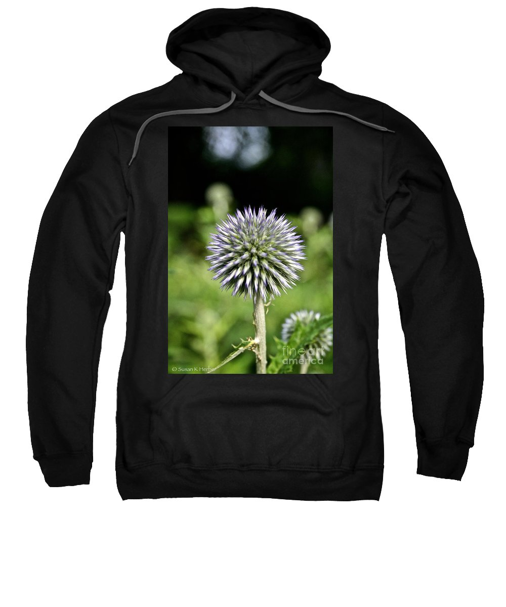 Floral Sweatshirt featuring the photograph Globe Thistle by Susan Herber