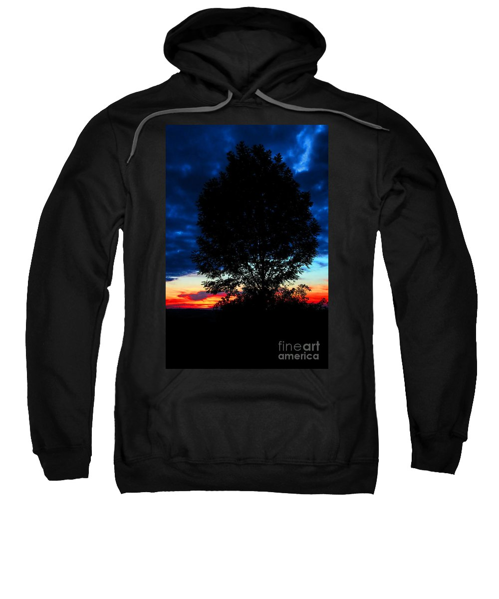 God's Creation Sweatshirt featuring the photograph God's Creation by Mariola Bitner