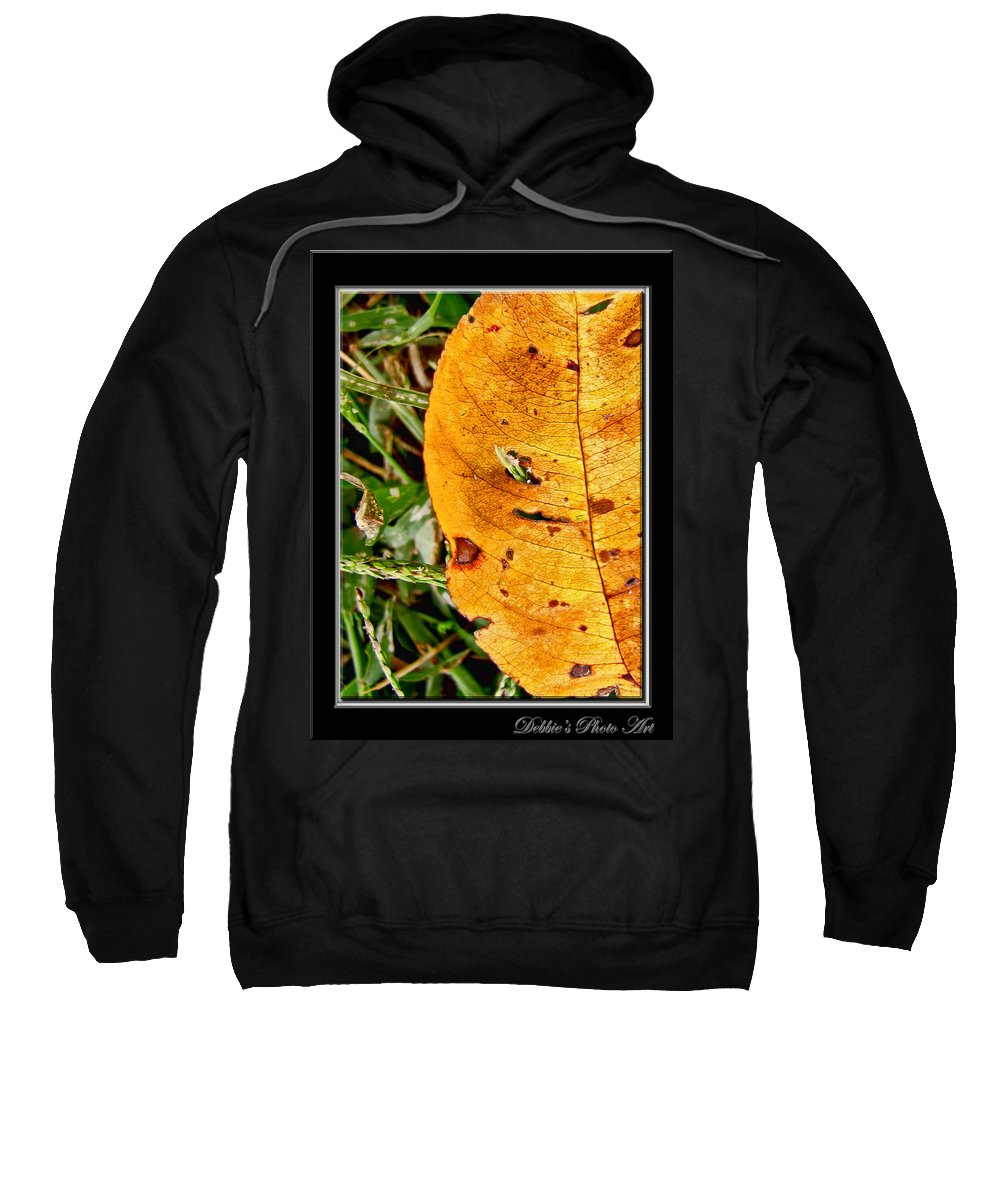 Nature Sweatshirt featuring the photograph Grass Grows Through The Leaf Window by Debbie Portwood