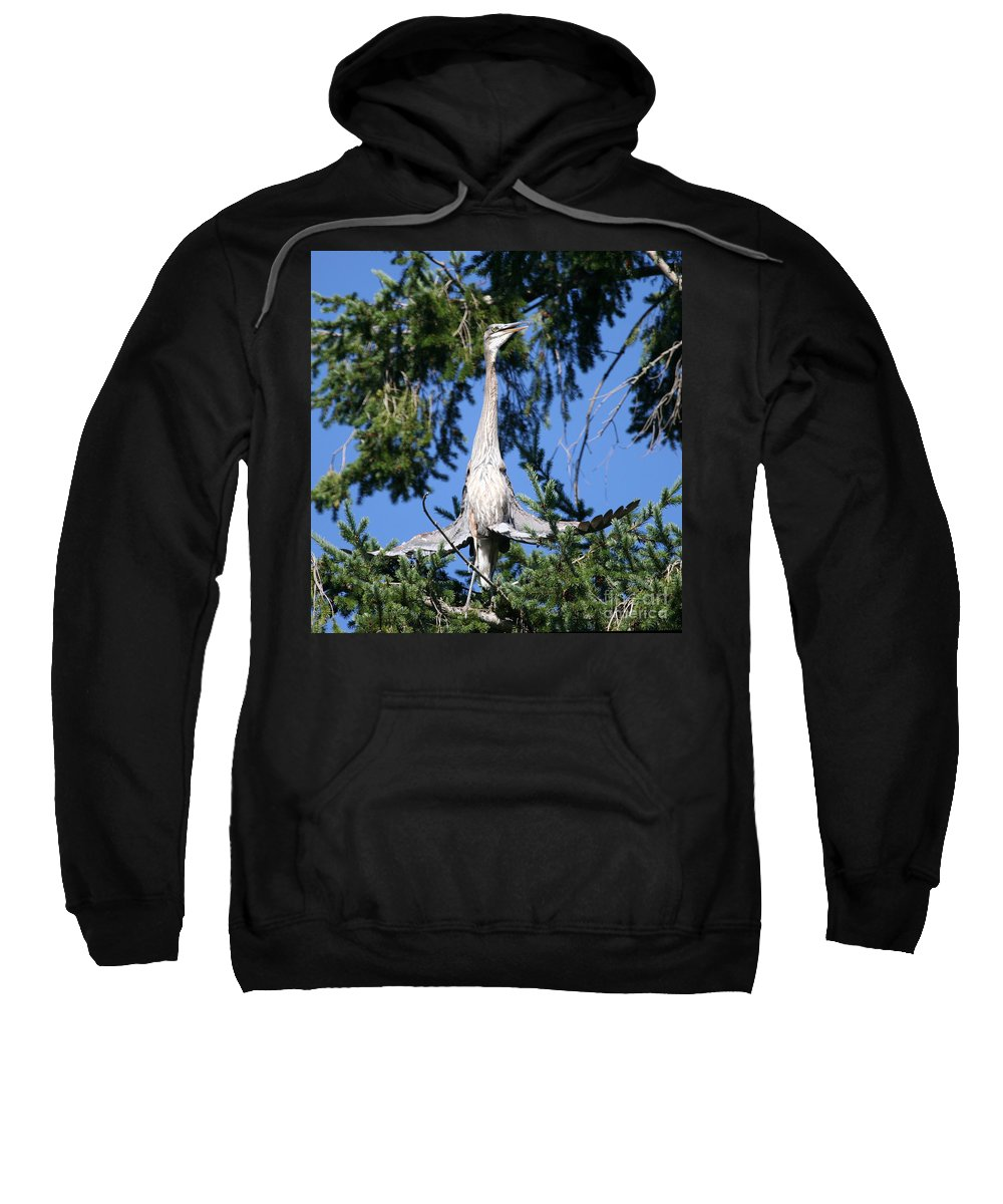 Blue Sweatshirt featuring the photograph Great Blue Heron Meditation Pacific Northwest by Tap On Photo