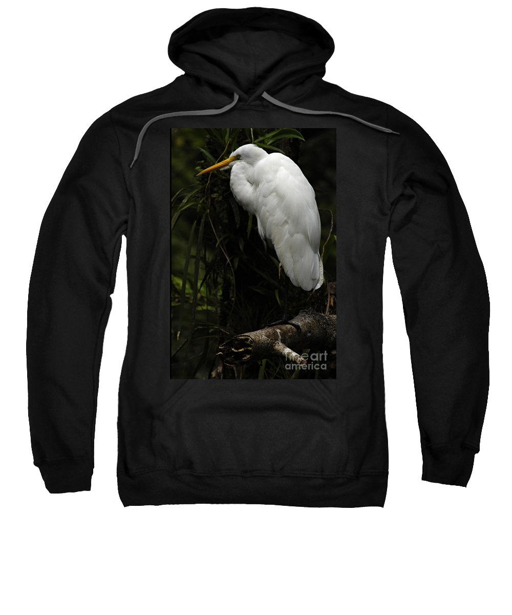 Snowy Egret Sweatshirt featuring the photograph Great Egret 3 by Bob Christopher