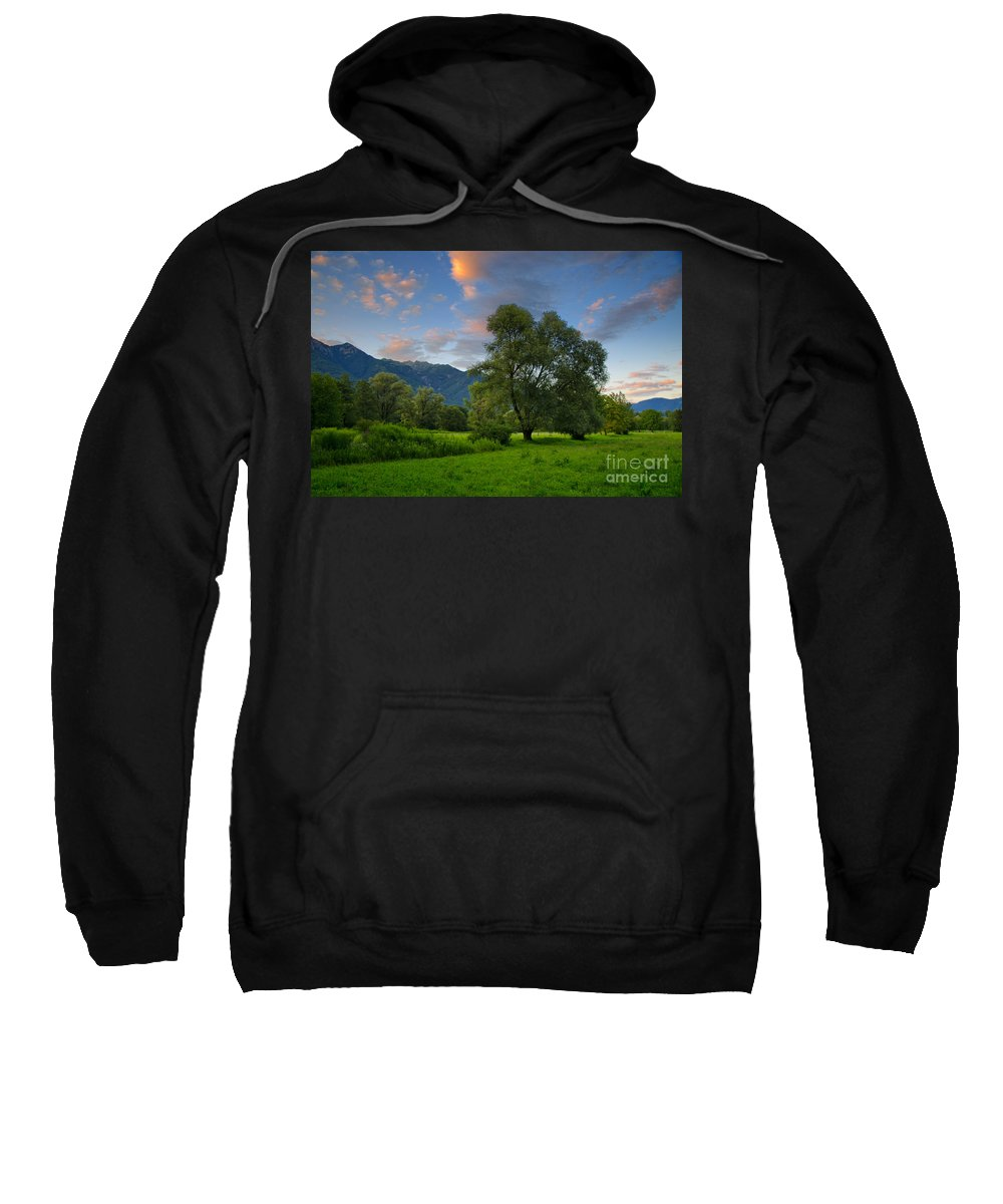 Trees Sweatshirt featuring the photograph Green Field With Trees by Mats Silvan