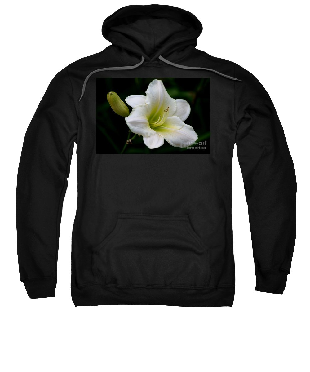 Day Lily Sweatshirt featuring the photograph Heaven Sent by Living Color Photography Lorraine Lynch