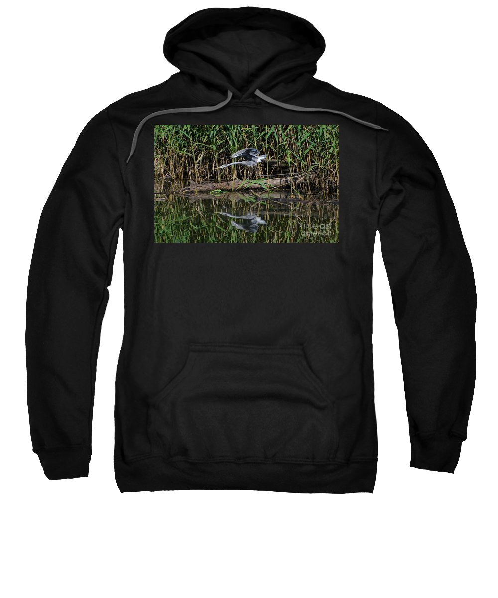 Heron Sweatshirt featuring the photograph Heron Reflected In The Water by Mats Silvan