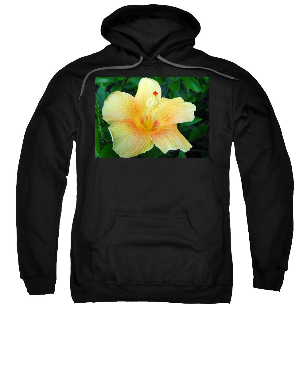Flower Sweatshirt featuring the photograph Hibiscus Hip by Jim Brage