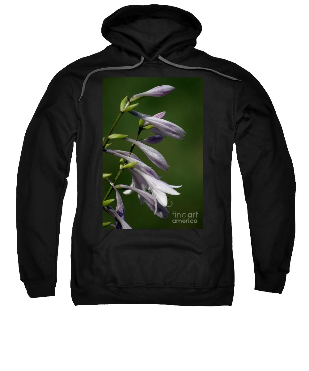 Floral Sweatshirt featuring the photograph Hosta Flowers by Living Color Photography Lorraine Lynch