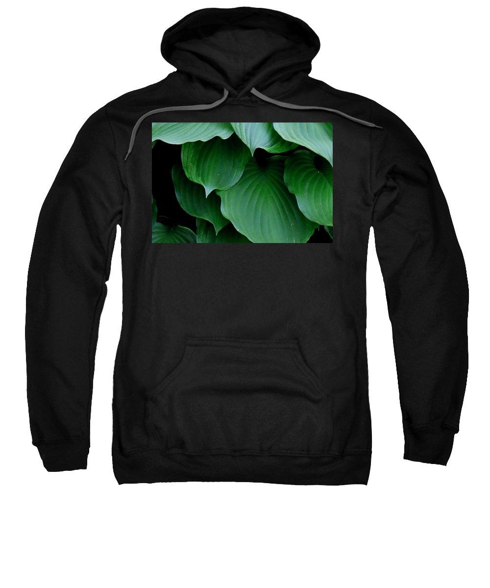 Hosta Sweatshirt featuring the photograph Hosta Green by Betty Northcutt