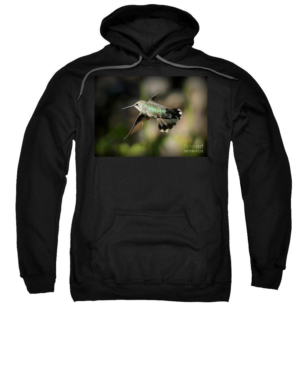 Hummingbird Sweatshirt featuring the photograph Hummingbird Fly By by Carol Groenen