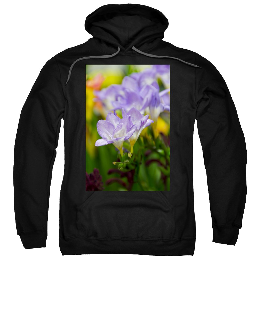 Floral Sweatshirt featuring the photograph In Living Color by Angelina Vick