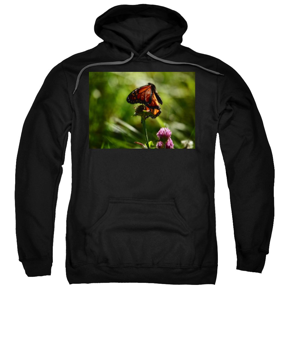 Butterfly Sweatshirt featuring the photograph In The Breeze by Susan Capuano