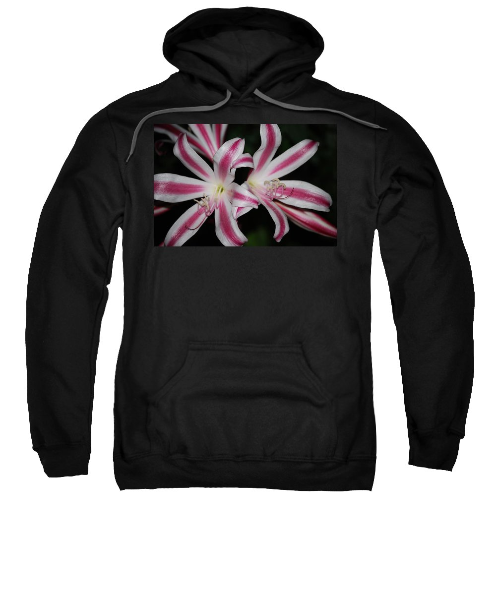 Flower Sweatshirt featuring the photograph Inviting Lily by Judy Hall-Folde