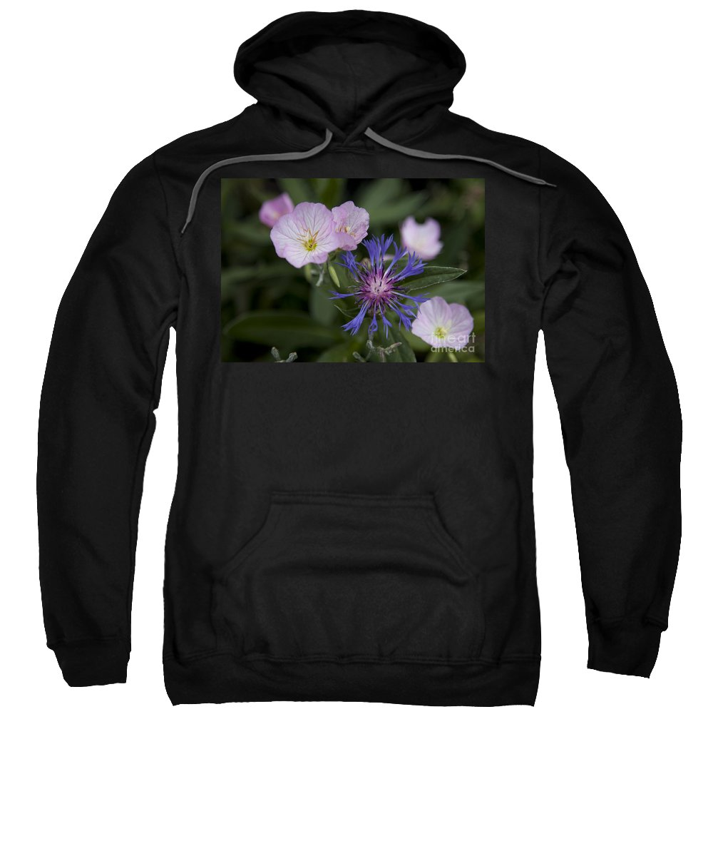 Floral Sweatshirt featuring the photograph Joined by Amanda Barcon
