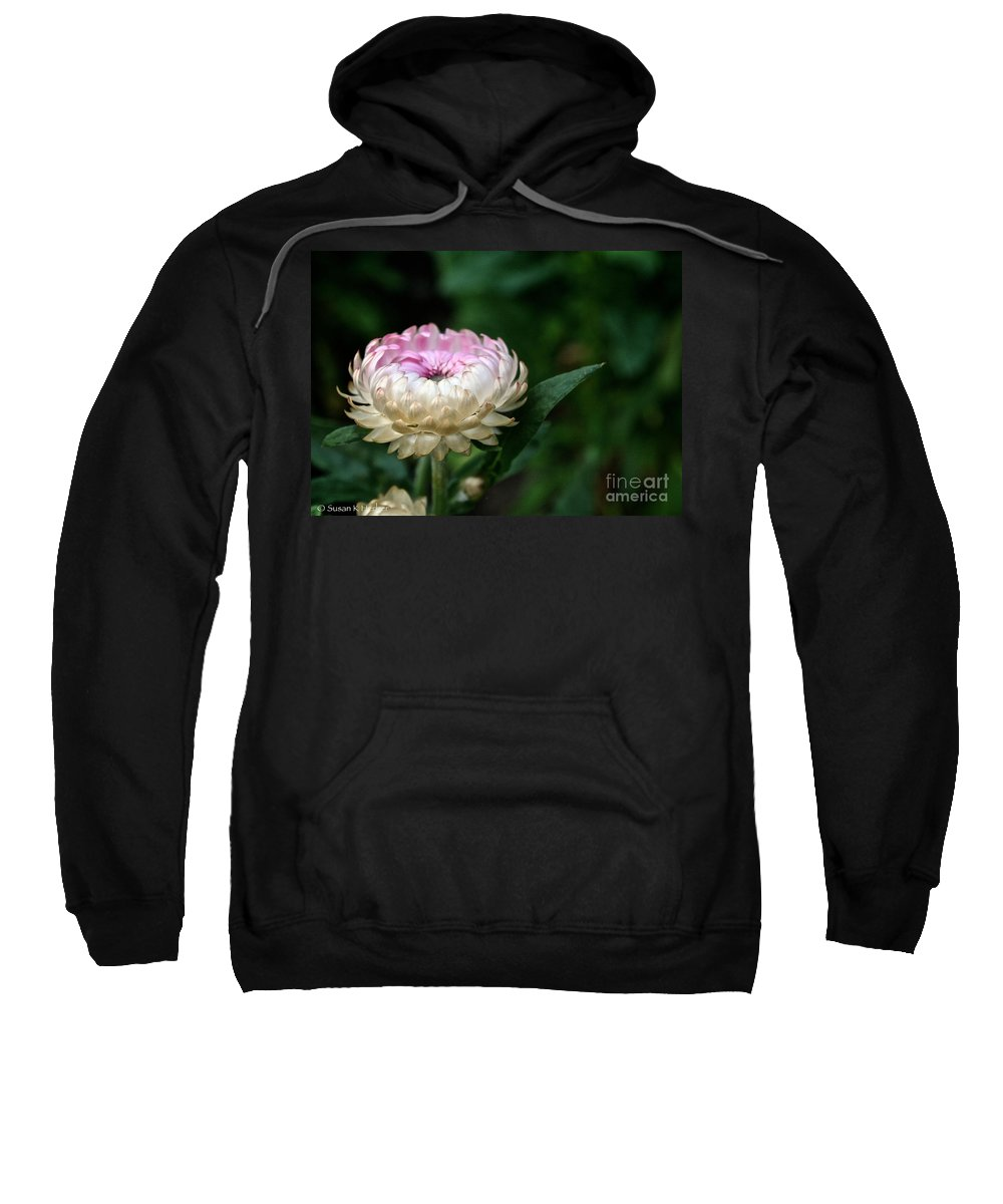 Plant Sweatshirt featuring the photograph King Rose Strawflower by Susan Herber
