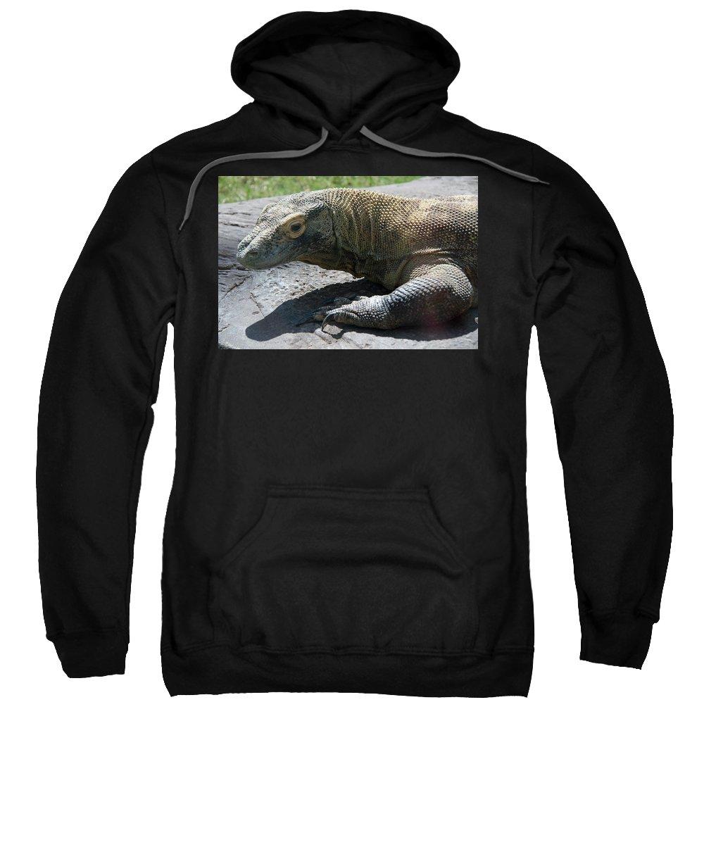 Komodo Dragon Sweatshirt featuring the photograph Komodo Dragon by Elizabeth Rose