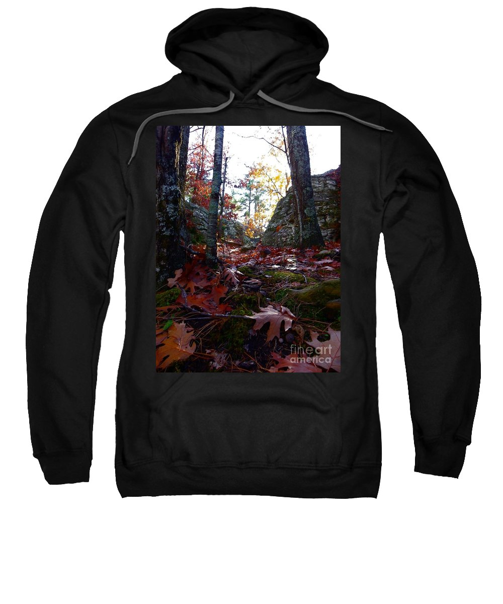 Fall Sweatshirt featuring the photograph Leaves In The Forest by Charleen Treasures