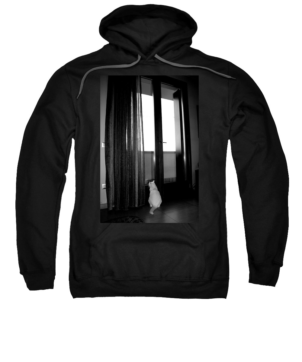 Gatto Sweatshirt featuring the photograph Let Me Go by Donato Iannuzzi