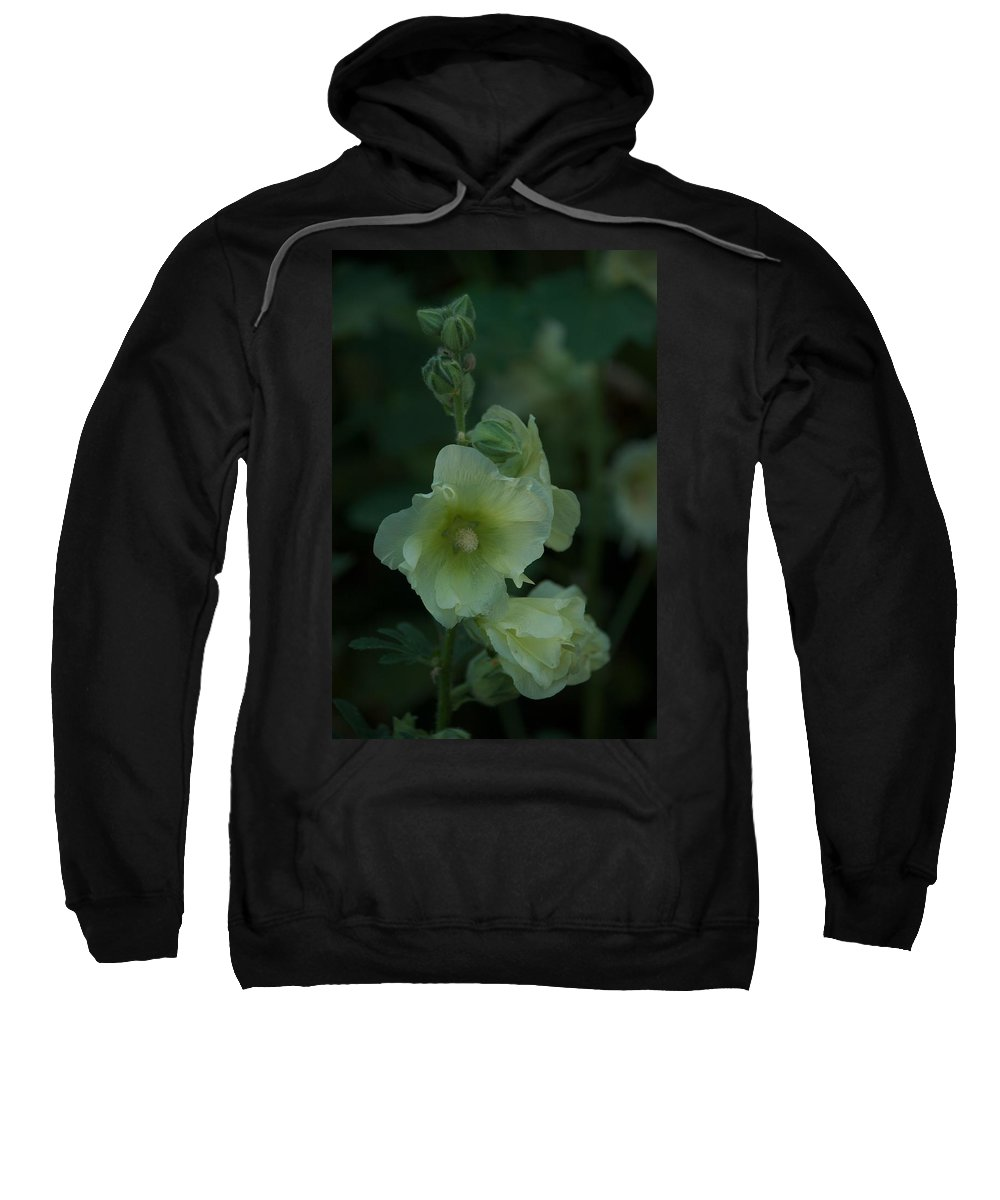Flower Sweatshirt featuring the photograph Lime by Joseph Yarbrough