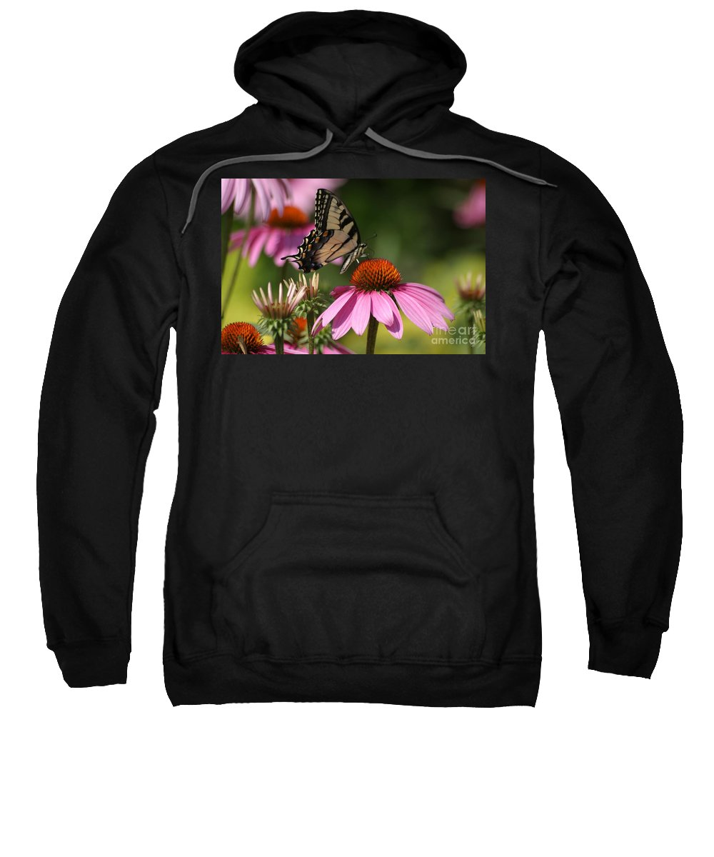 Butterfly Sweatshirt featuring the photograph Living Color by Living Color Photography Lorraine Lynch