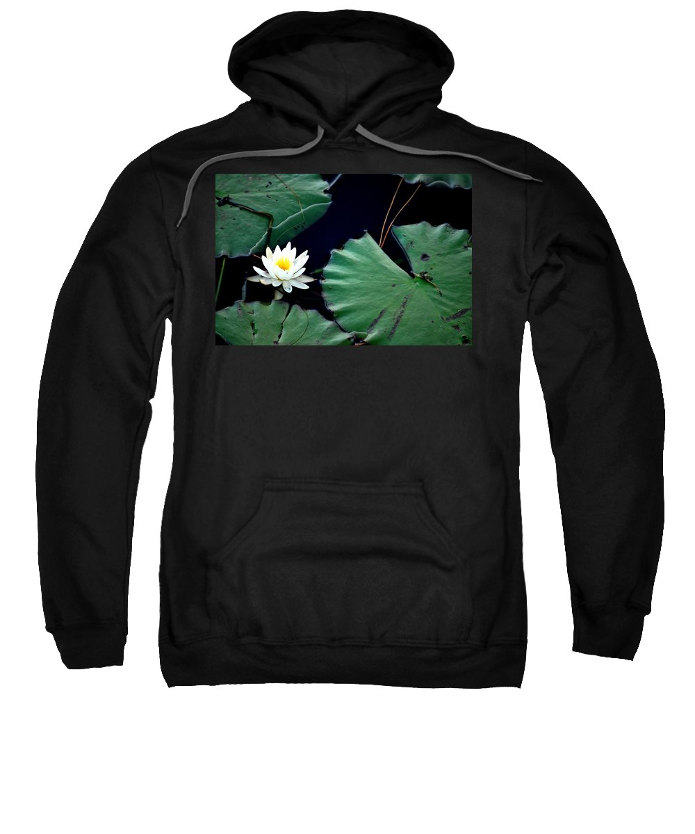 Lily Sweatshirt featuring the photograph Lone Lily by May Photography