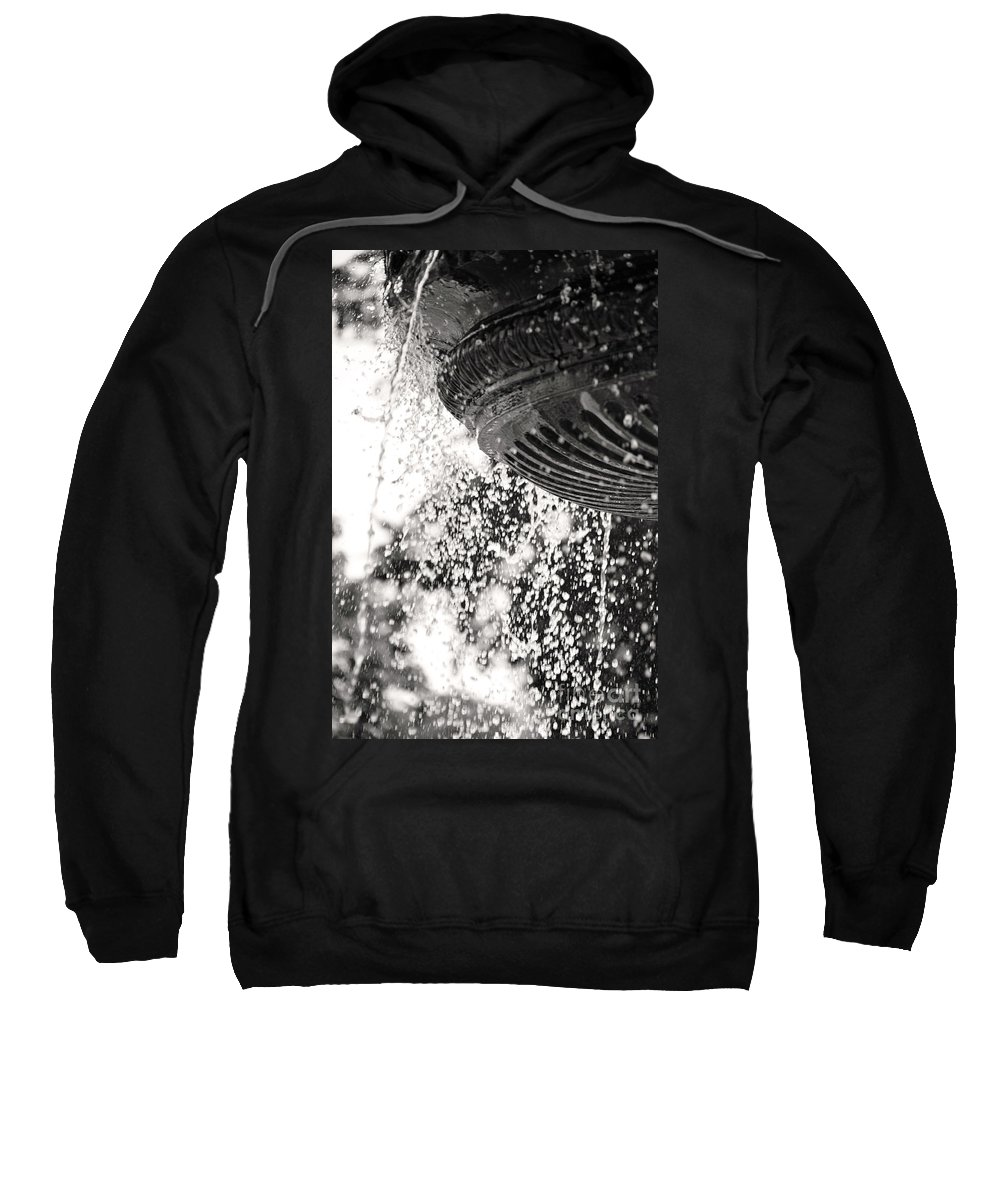 British Columbia Sweatshirt featuring the photograph Loss by Traci Cottingham