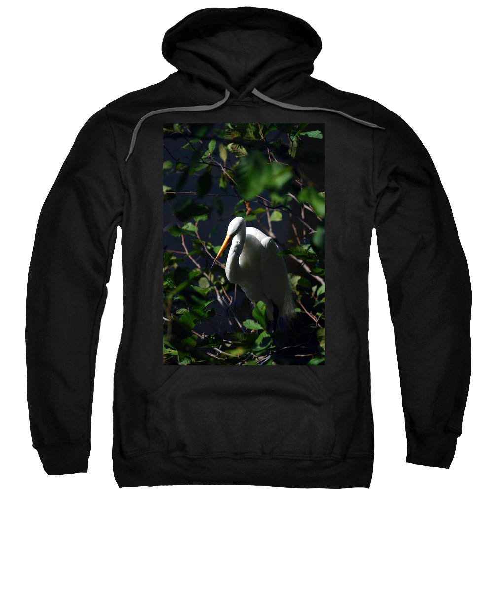Great Egret Sweatshirt featuring the photograph Lost In Thought by Lori Tambakis