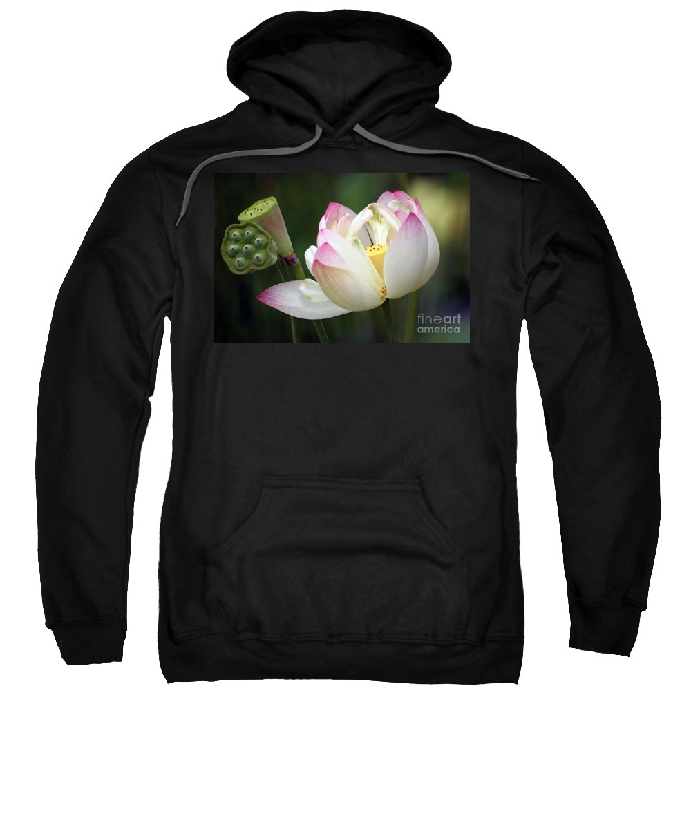 Lotus Sweatshirt featuring the photograph Lovely Lotus by Living Color Photography Lorraine Lynch