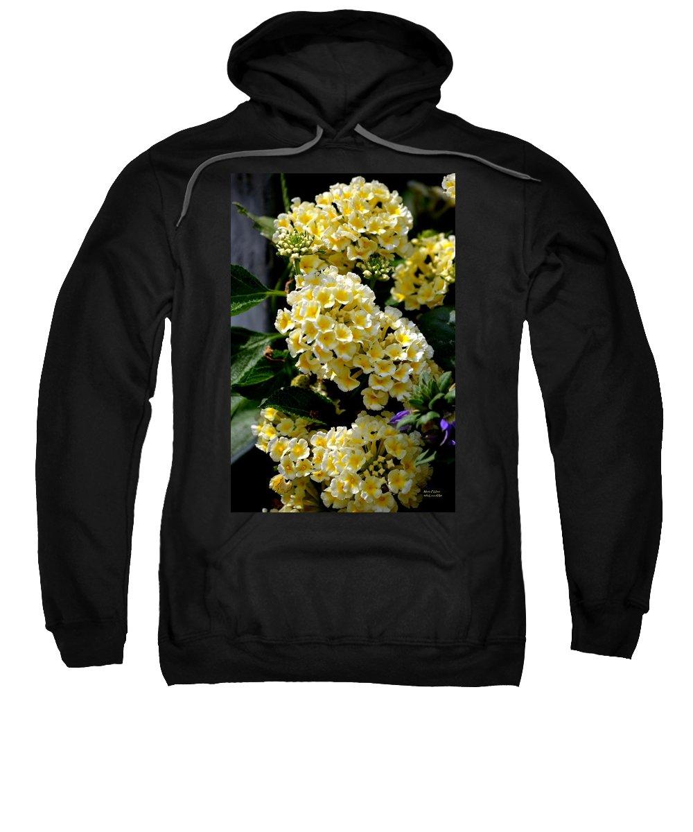 Loving Sweatshirt featuring the photograph Loving Yellow by Maria Urso