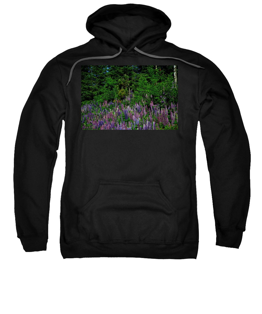 Lupines Sweatshirt featuring the photograph Lupines by Joi Electa
